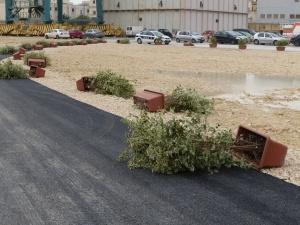 JESC landscaping effected by wind